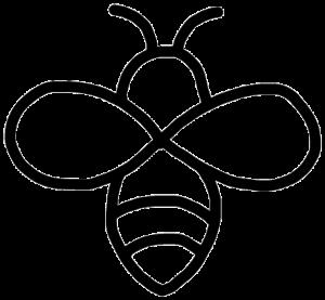 colony-swarm-removal